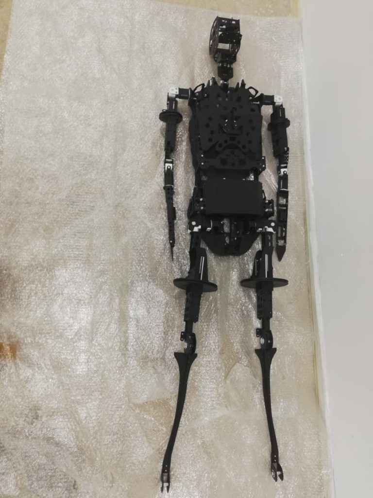 TEN Fab Produces Skeleton for Patient Simulator Robot