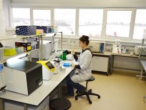 Семинар «Сервисы ДНК-диагностики». Приглашаем к участию ученых-биологов!